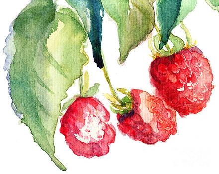 Raspberry by Regina Jershova
