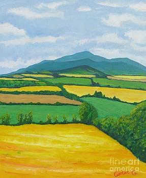 Rathvilly Corn Fields by Caroline Cunningham