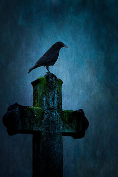 Raven and gravestone by Peter Chadwick