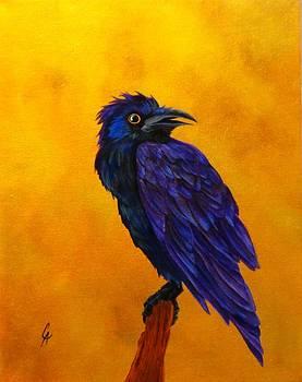 Raven by Carol Avants