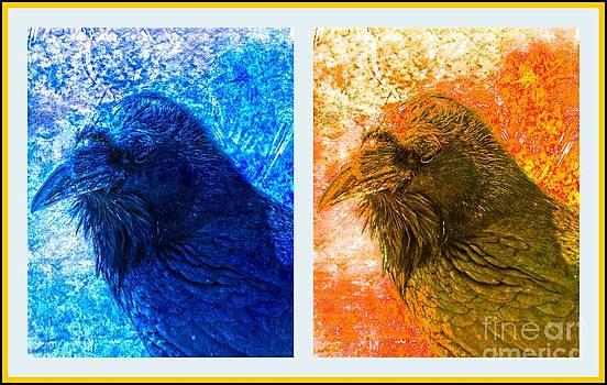 Susanne Van Hulst - Raven Collage