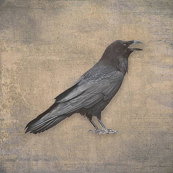 Raven Digital Art in Old World Antique Style by Julie Magers Soulen