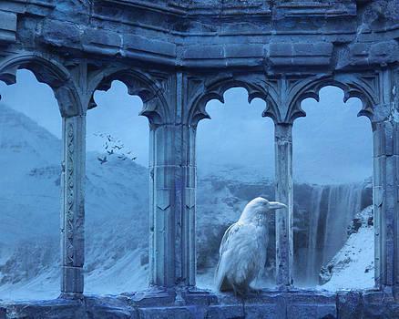 Raven of Winter by Cheryl Heffner