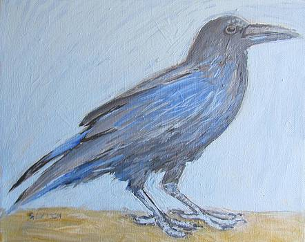 Raven by Sandra Lytch