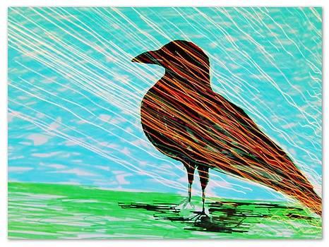 Raven waves by Joseph Ferguson