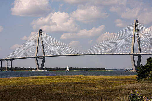 Terry Shoemaker - Ravenel Bridge 03