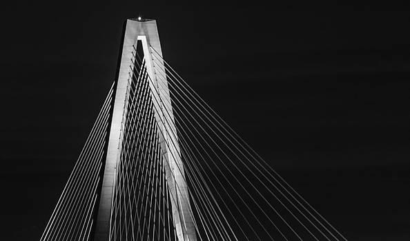 Bonnie Davidson - Ravenel Bridge Top