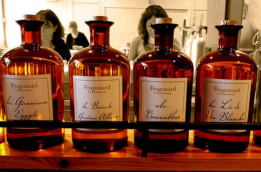Raw Materials Of Enchanting Fragrances by Christine Burdine