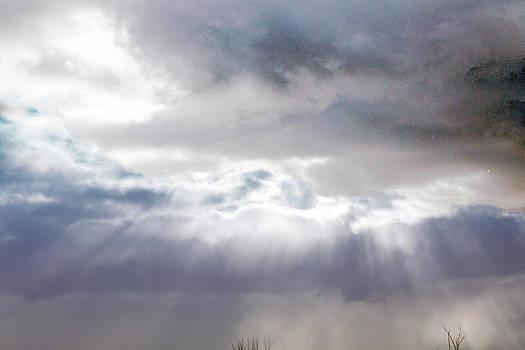 Ray From Heaven by Rhonda Humphreys