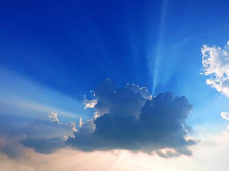 Rays by Ayan Mukherjee