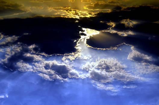 Bliss Of Art - Rays
