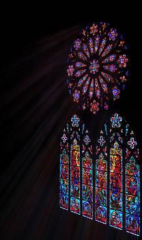 Regina  Williams  - Rays of Color