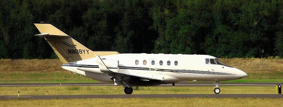 Aaron Berg - Raytheon Hawker 800XP
