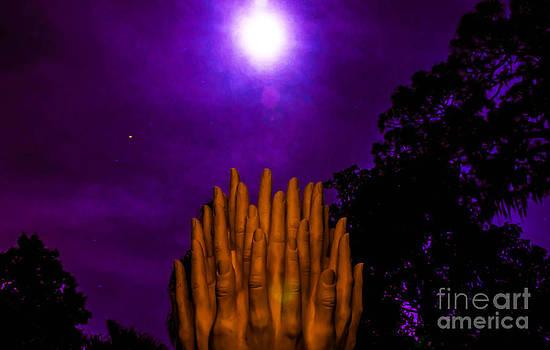 Reach for the Super Moon by Shawn  Bowen