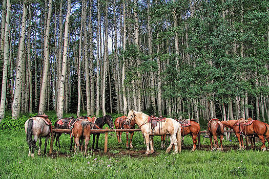 Ready To Ride by Gene Praag