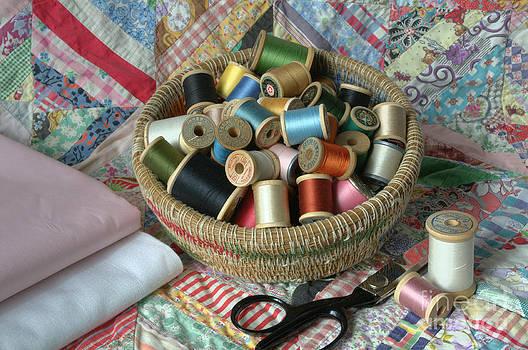 Sarah Schroder - Ready To Sew