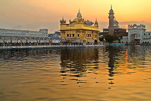 Devinder Sangha - Real Gold at Golden Temple