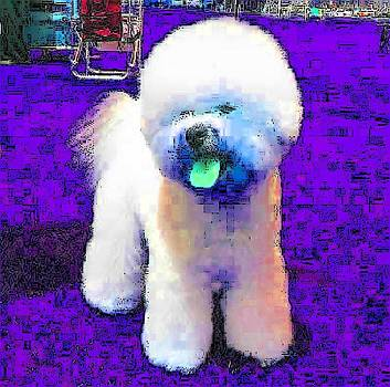 Real Stuffed Dog by Kathy Budd