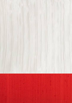 Red and Ivory Silk by Margaret Ivory