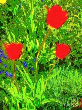 Red and spring by Dana Hermanova