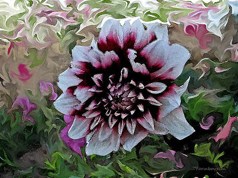 Red and White Dahlia  by Harold Farmboyzim Zimmer