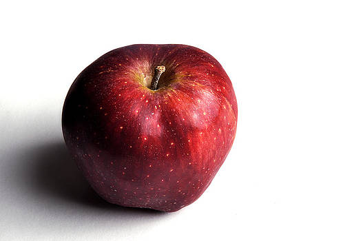 Rebecca Brittain - Red Apple on White 2