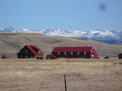 Jeffrey Randolph - Red Barn