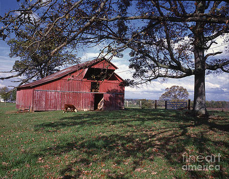 Red Barn by   Joe Beasley