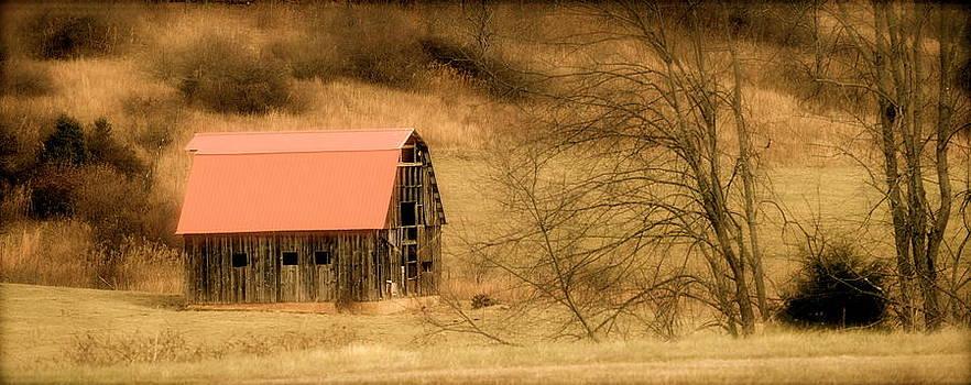 Red Barn of Virginia by Teresa Tilley