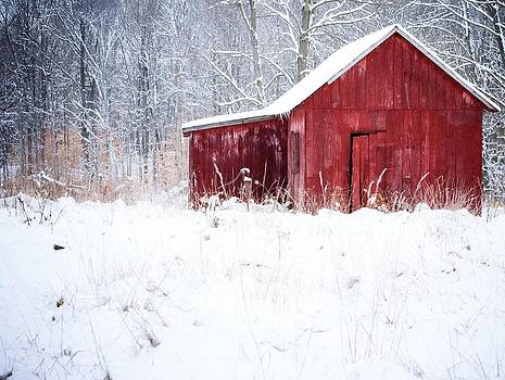 Red Barn by Virginia Folkman