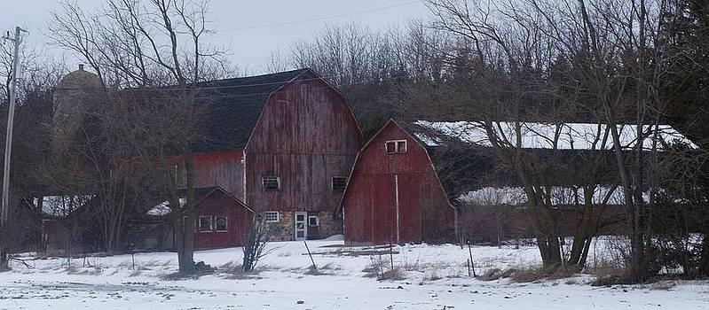 Red Barns by Kristine Bogdanovich