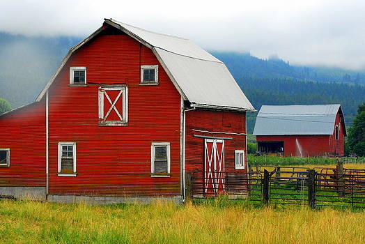Red Barns by Mamie Gunning