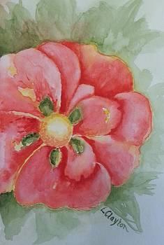 Red Beauty by Lynette Clayton