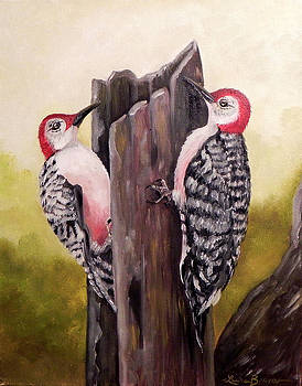 Red bellied woodpeckers by Laura Brown