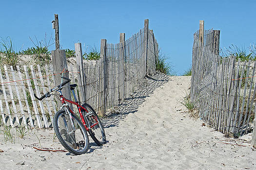 Red Bicycle On The Beach by Susan OBrien