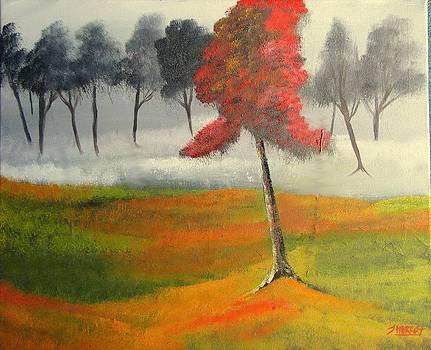Red blossom 2 by John Morris