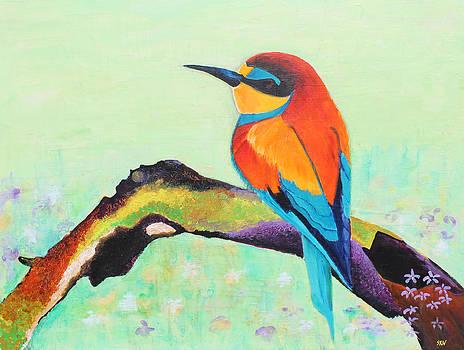 European bee-eater by Sanjeev Nandan