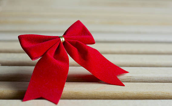 Newnow Photography By Vera Cepic - Red bow tied