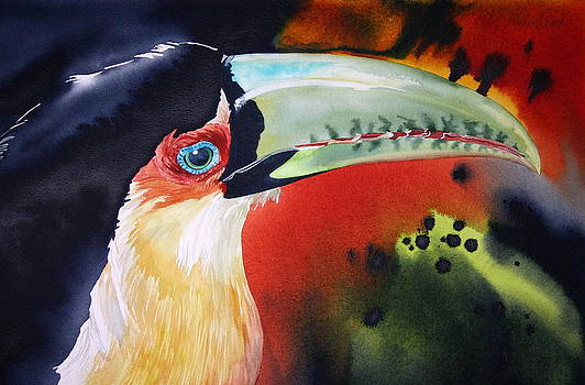 Red-breasted Toucan by Kitty Harvill