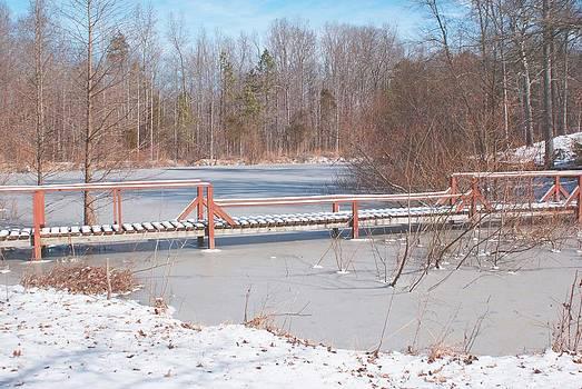 Red Bridge by Bill Talich