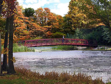 Red Bridge In Autumn by Cedric Hampton
