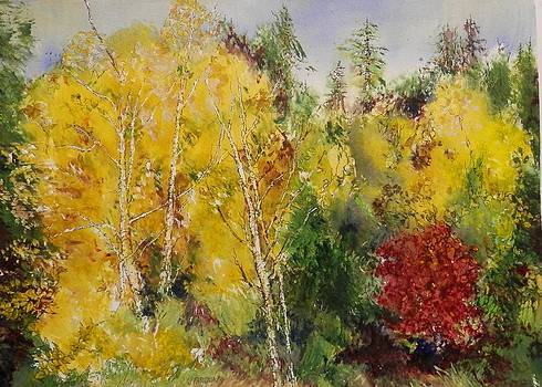 Red Brush by Marilyn McMeen Brown