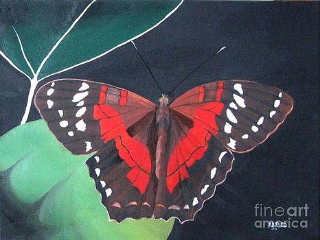 Red Butterfly by Richard Dotson