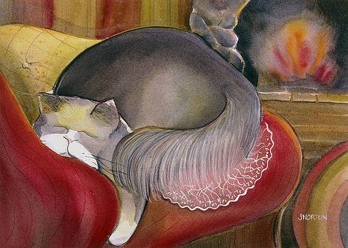 Sleeping Persian Cat on Red Sofa by Jen Norton