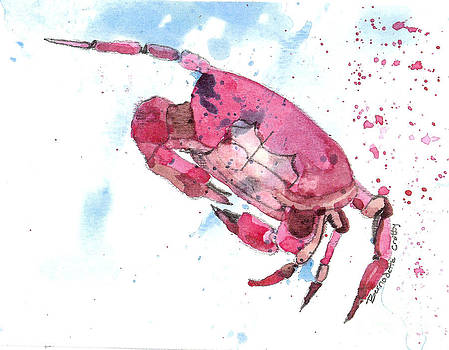 Red Crab by Bernadette Crotty