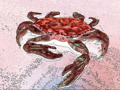 Red Crab Watercolor and Ink by