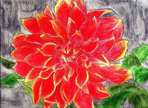 Red Dalia  by Margie  Byrne