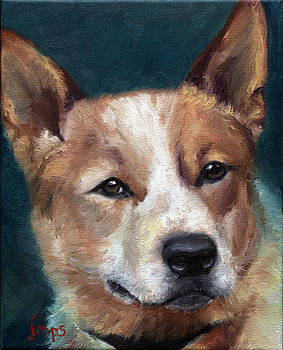 Red Dog by Jean  Smith