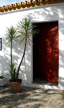 Red Door Shadows by Rosie Brown