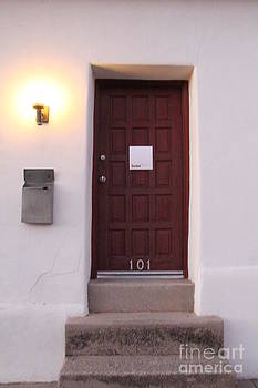 Red Doors of Tucson by Diane Greco-Lesser